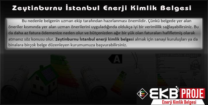 Zeytinburnu İstanbul Enerji Kimlik Belgesi